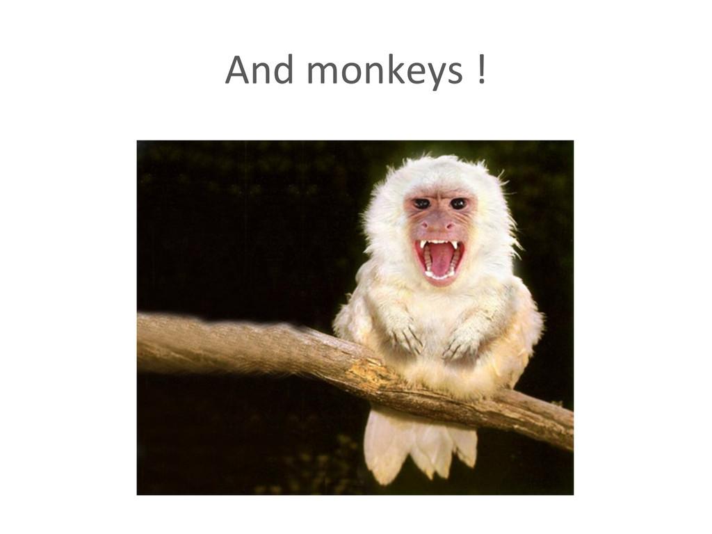 And monkeys !