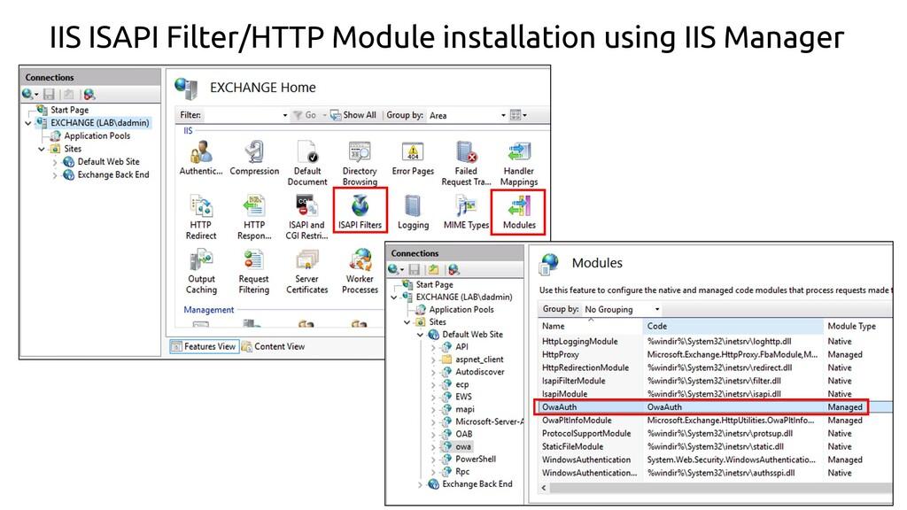 24 IIS ISAPI Filter/HTTP Module installation us...