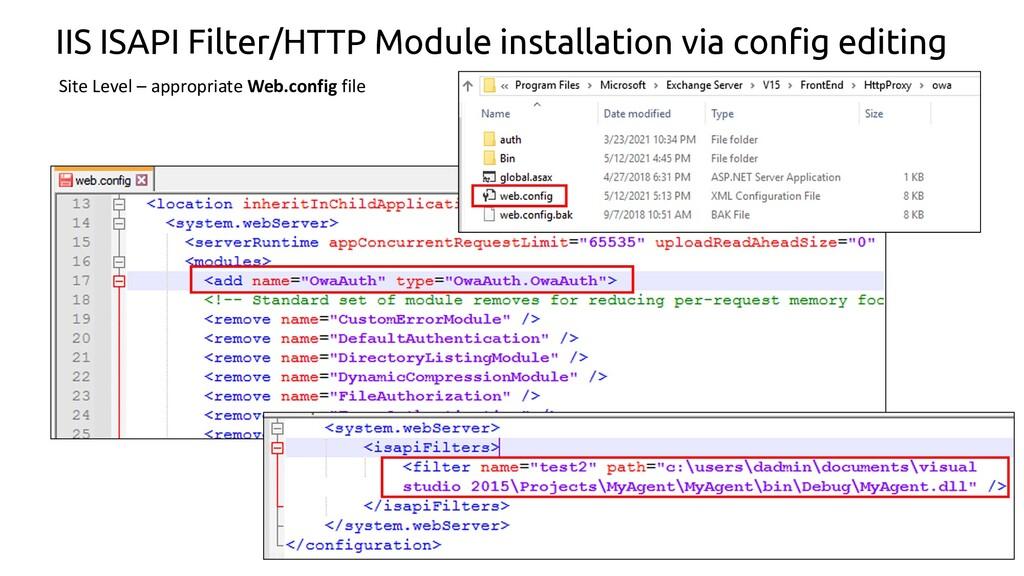 27 IIS ISAPI Filter/HTTP Module installation vi...
