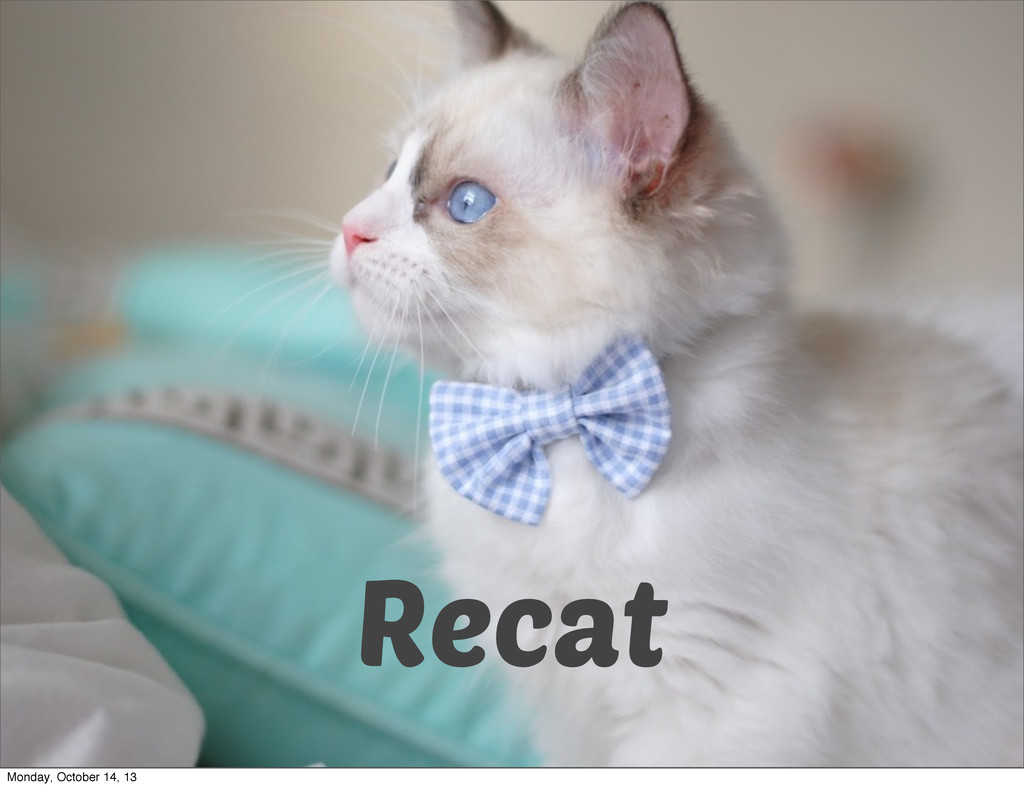 Recat Monday, October 14, 13
