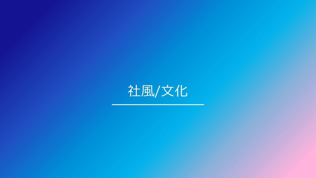社風/文化