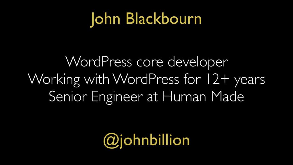 WordPress core developer Working with WordPress...
