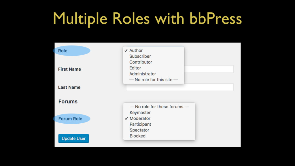 Multiple Roles with bbPress