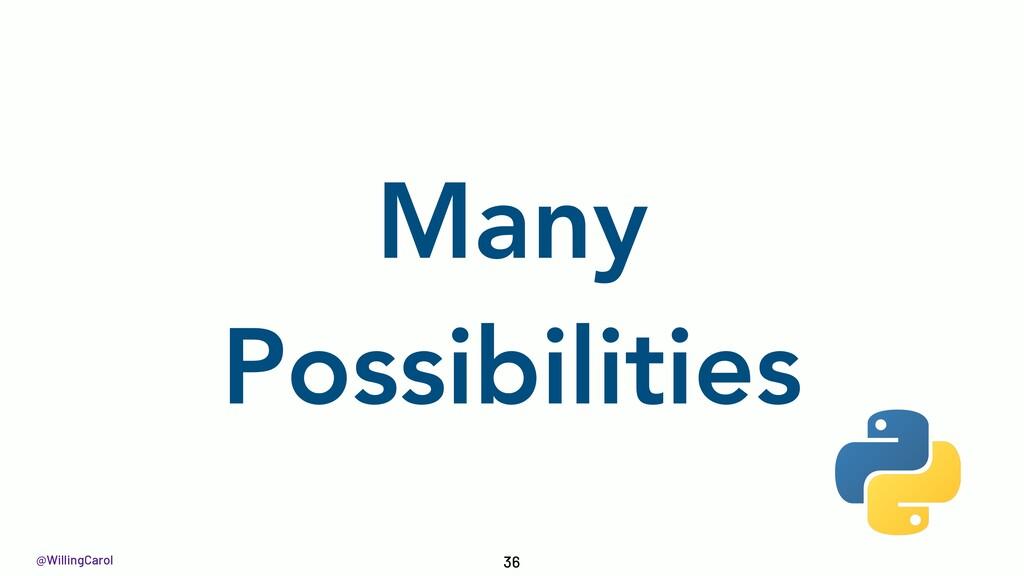 @WillingCarol Many Possibilities 36
