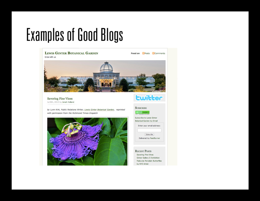 Examples of Good Blogs