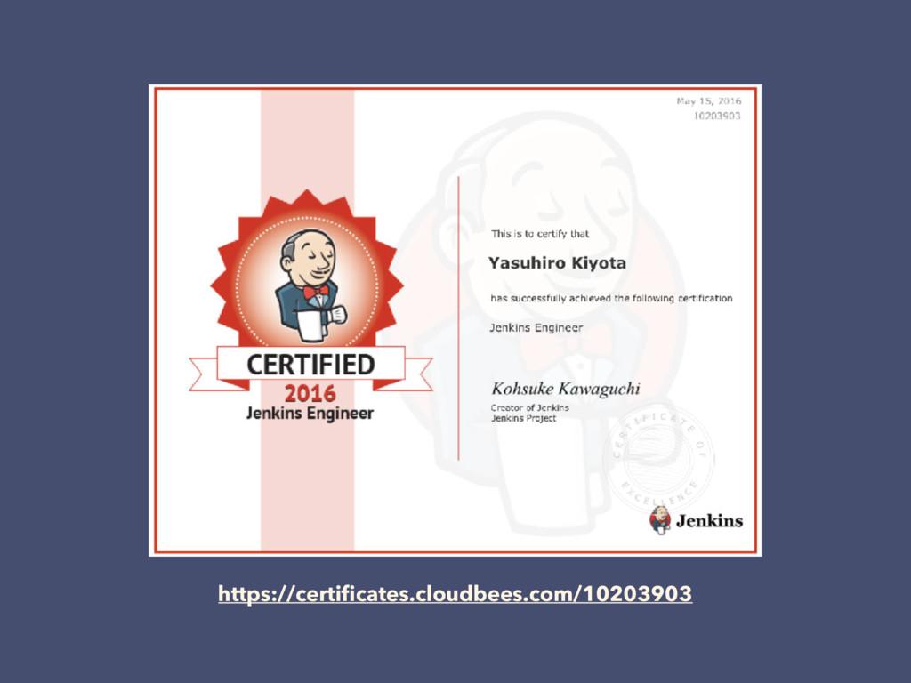 https://certificates.cloudbees.com/10203903