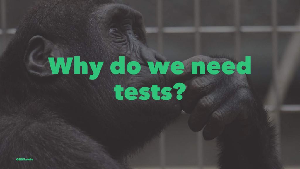 Why do we need tests? @EliSawic