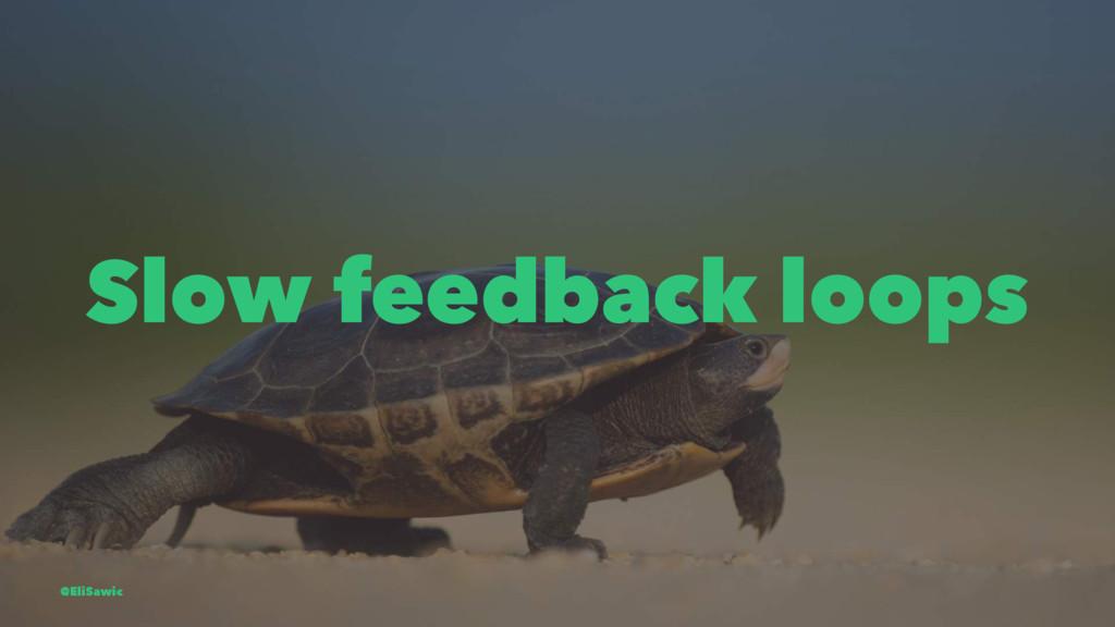 Slow feedback loops @EliSawic