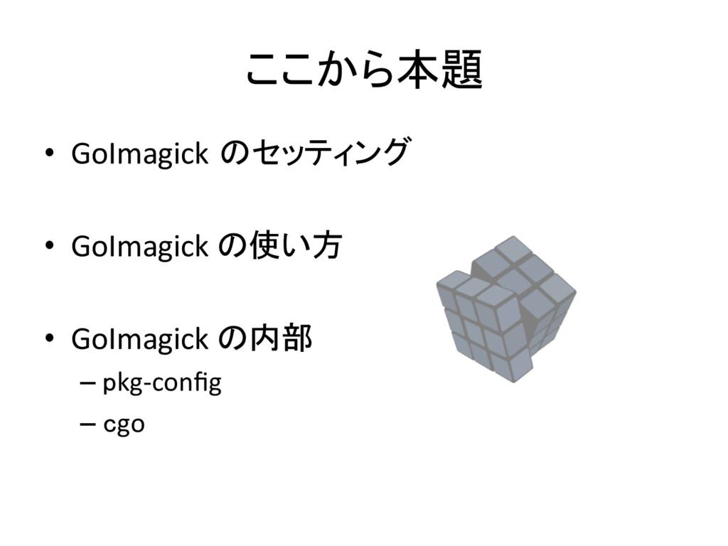 ここから本題 • GoImagick のセッティング  • GoImagick...