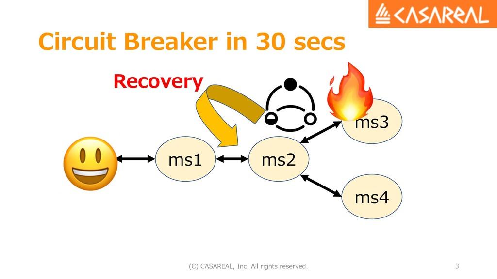 Circuit Breaker in 30 secs (C) CASAREAL, Inc. A...