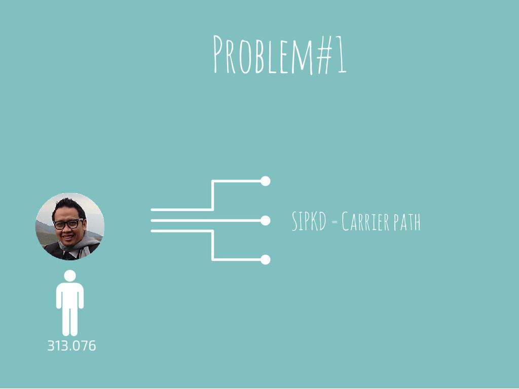 Problem#1 313.076 SIPKD = Carrier path