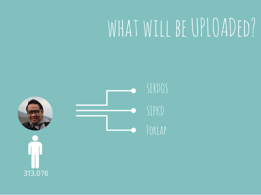 what will be UPLOADed? 313.076 Forlap SIPKD SER...