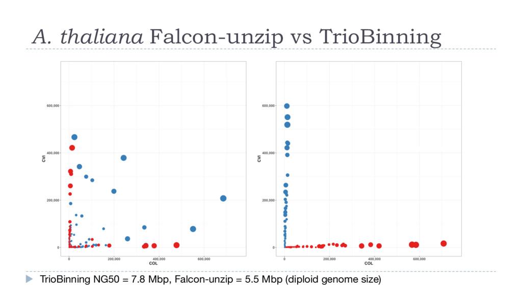 A. thaliana Falcon-unzip vs TrioBinning TrioBin...