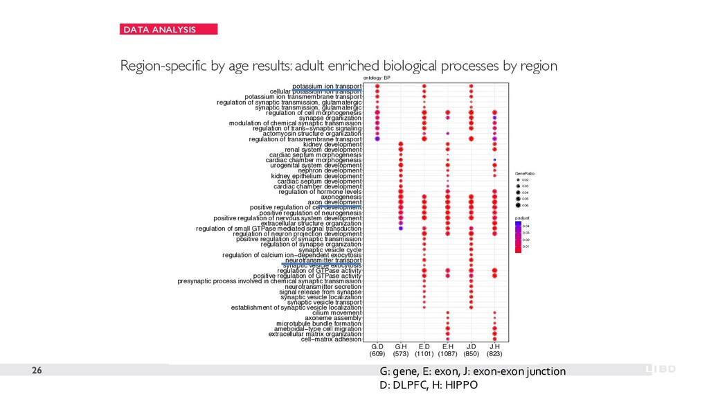 DATA ANALYSIS 26 Region-specific by age results...