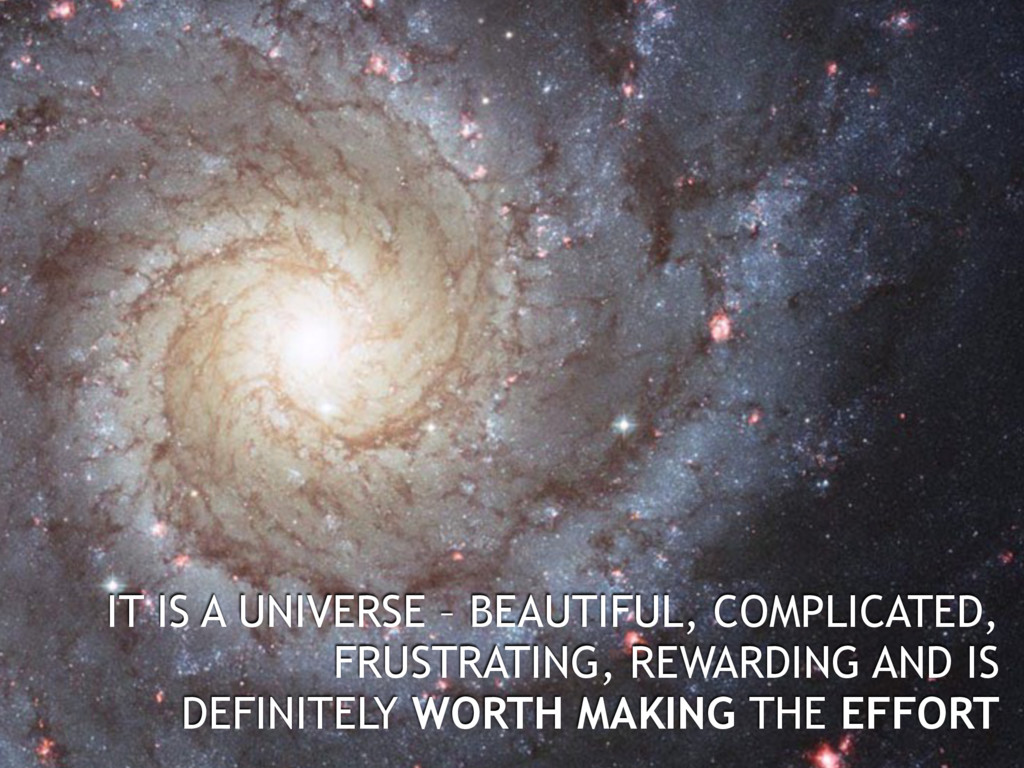 IT IS A UNIVERSE – BEAUTIFUL, COMPLICATED, FRUS...