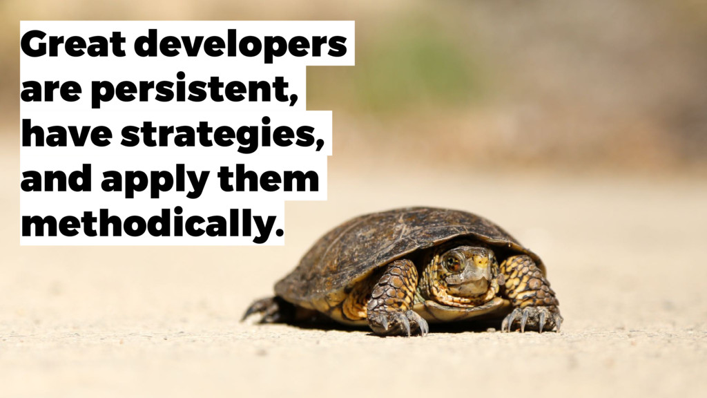 Great developers are persistent, have strategie...