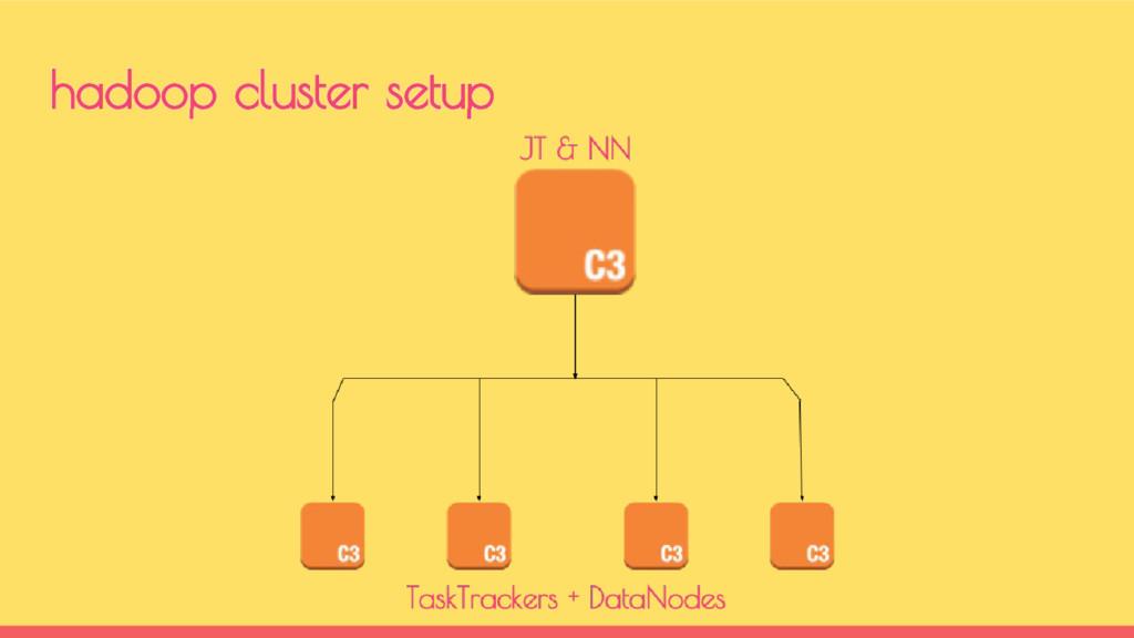 hadoop cluster setup