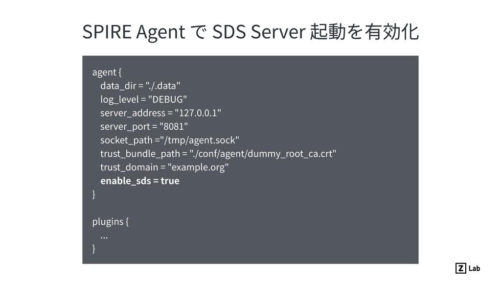 SPIRE Agent で SDS Server 起動を有効化 agent { data_di...