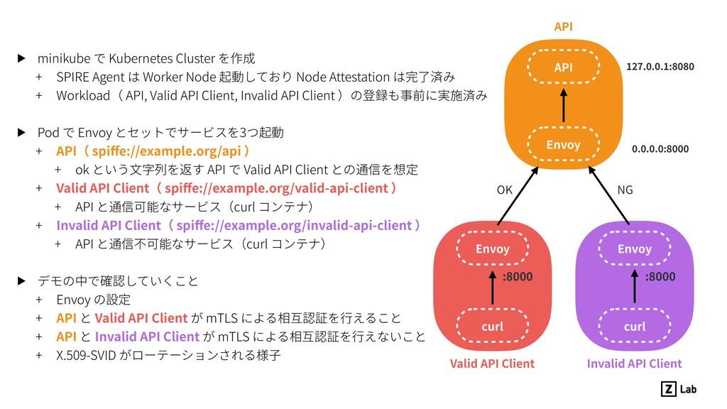 OK Envoy API curl Envoy curl Envoy Valid API Cl...
