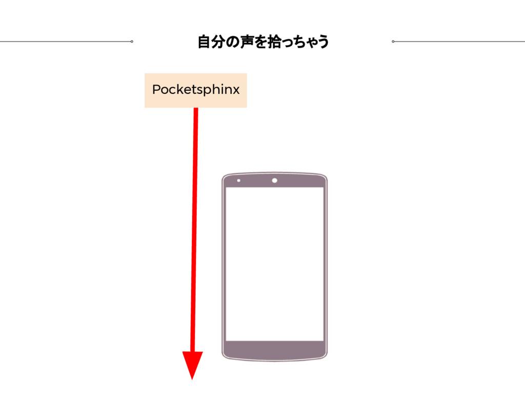 自分の声を拾っちゃう Pocketsphinx