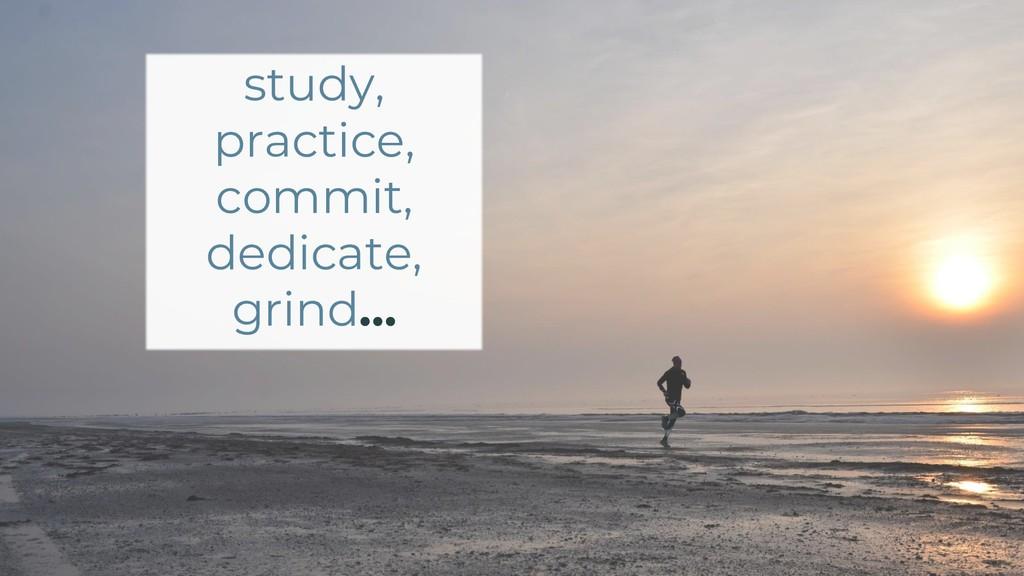 study, practice, commit, dedicate, grind…