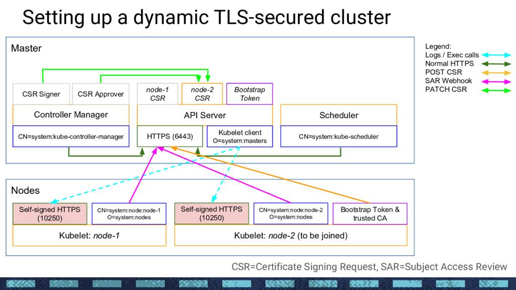 Setting up a dynamic TLS-secured cluster Nodes ...