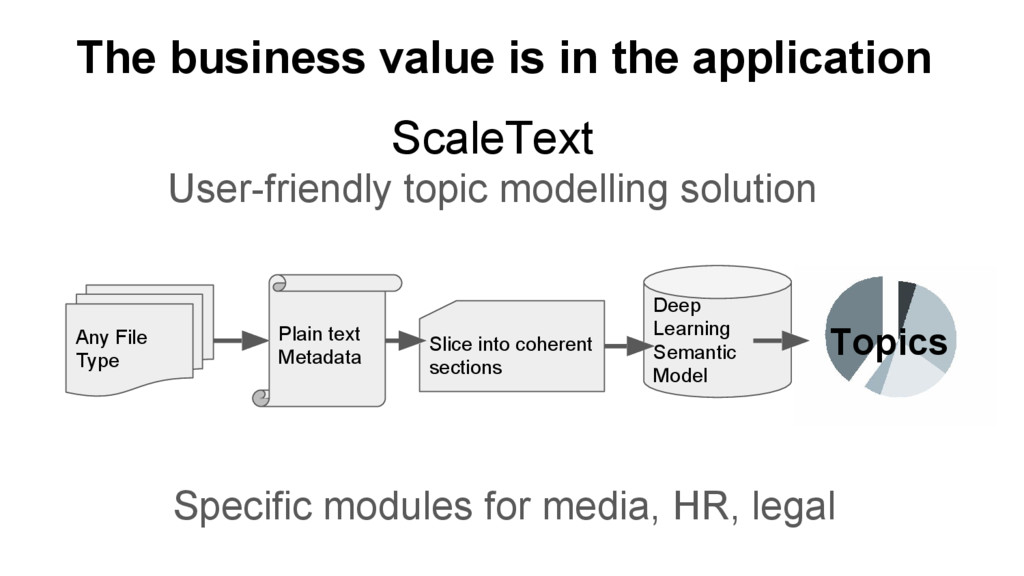 ScaleText User-friendly topic modelling solutio...