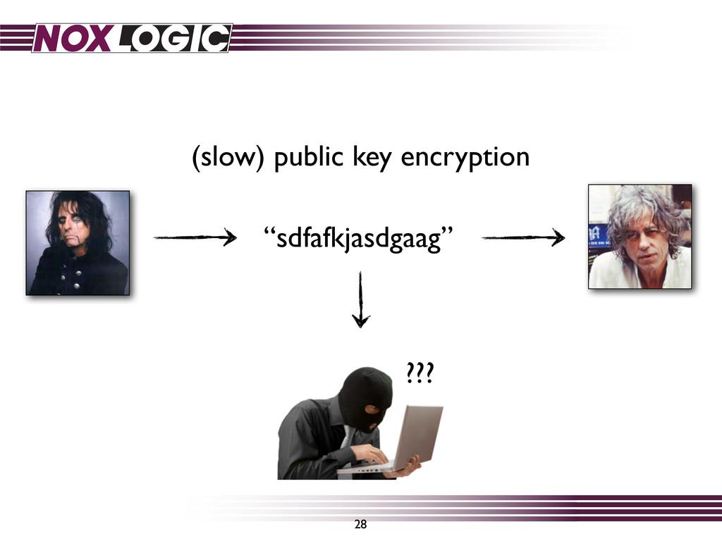 "28 ""sdfafkjasdgaag"" ??? (slow) public key encry..."