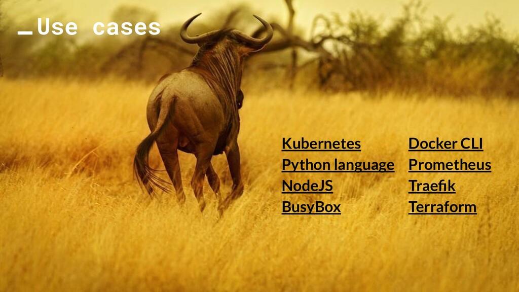 Use cases Kubernetes Python language NodeJS Bus...