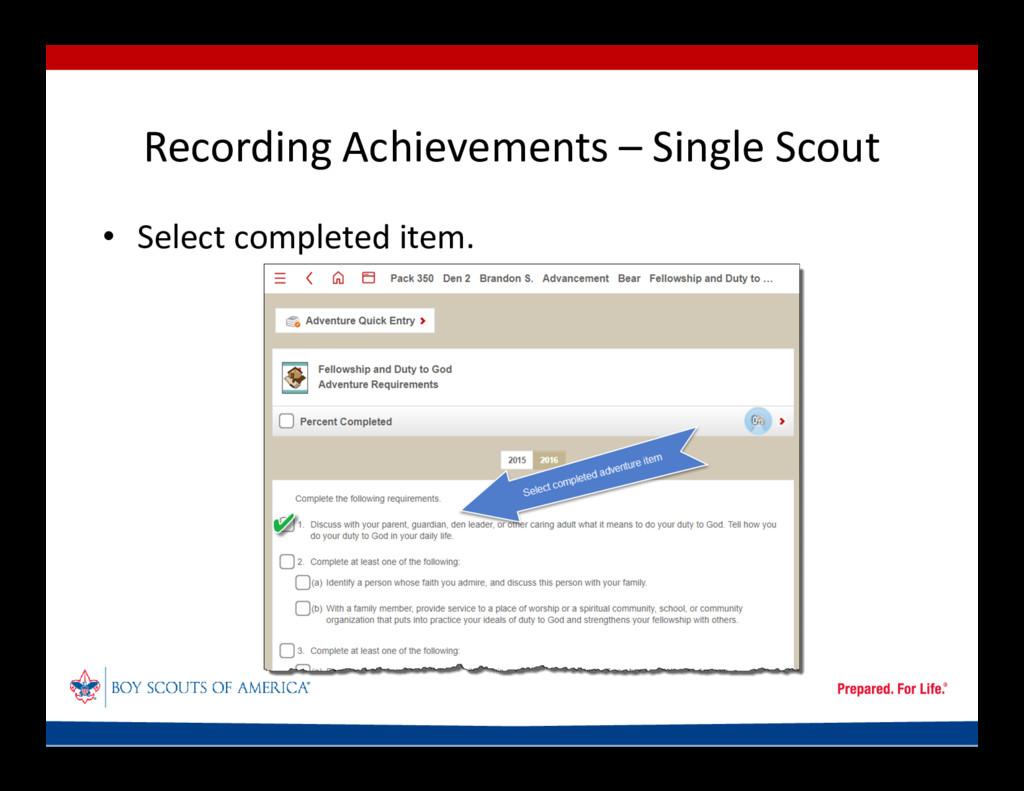 Recording Achievements – Single Scout • Select ...
