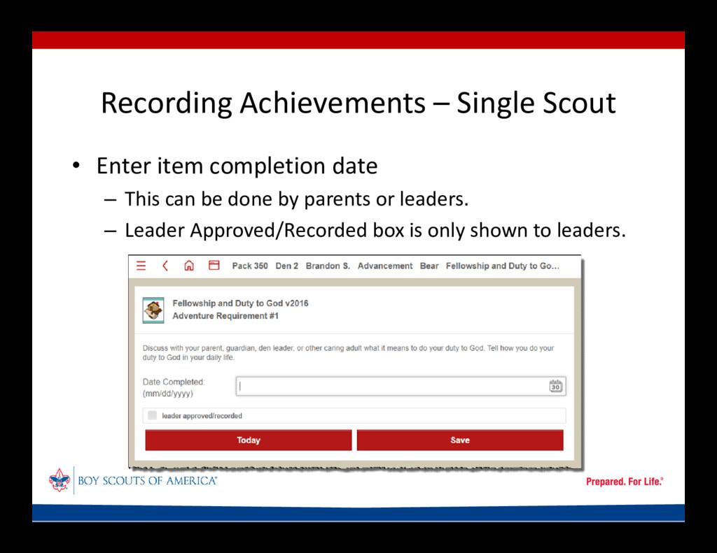 Recording Achievements – Single Scout • Enter i...