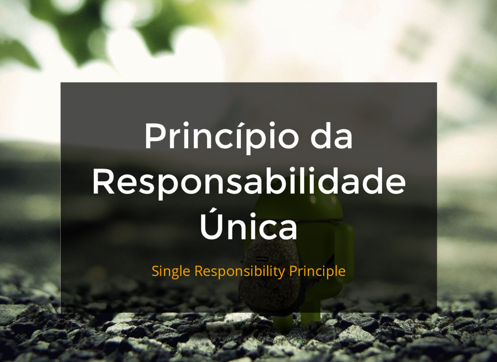Princípio da Responsabilidade Única Single Resp...