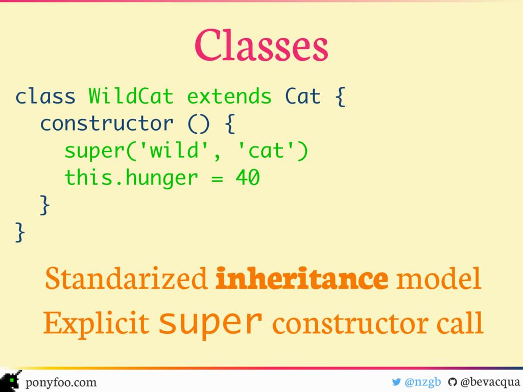 class WildCat extends Cat { constructor () { su...