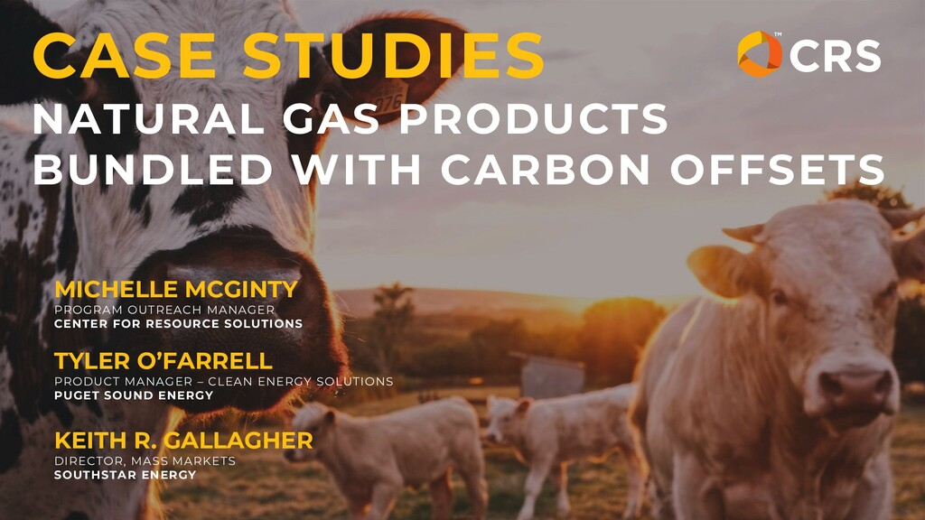 CASE STUDIES NATURAL GAS PRODUCTS BUNDLED WITH ...