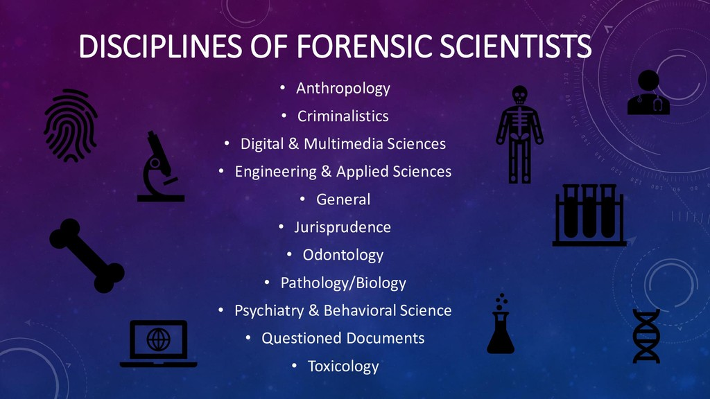 DISCIPLINES OF FORENSIC SCIENTISTS • Anthropolo...
