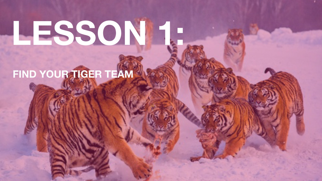 LESSON 1: FIND YOUR TIGER TEAM