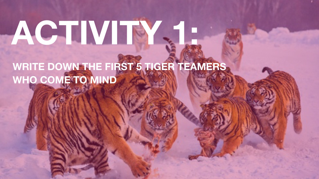 ACTIVITY 1: WRITE DOWN THE FIRST 5 TIGER TEAMER...