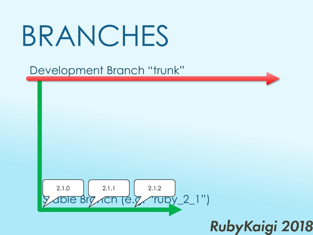 "Development Branch ""trunk"" BRANCHES Stable Bran..."
