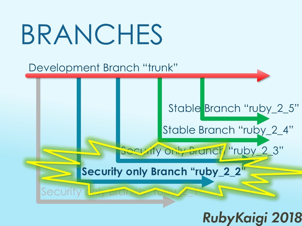 "Development Branch ""trunk"" BRANCHES Security on..."