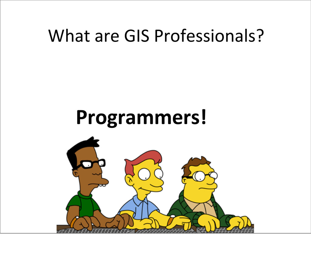 What are GIS Professionals? Programmer...