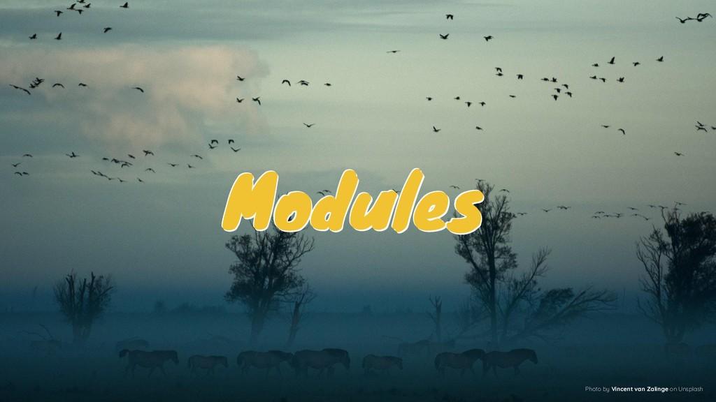 Modules Modules Modules Photo by Vincent van Za...