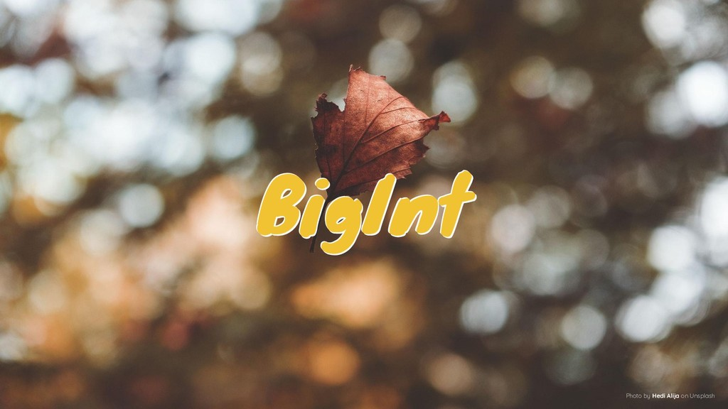 BigInt BigInt BigInt Photo by Hedi Alija on Uns...