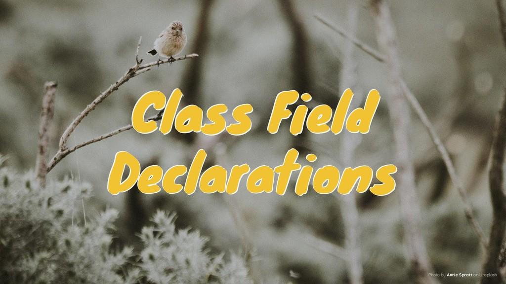 Class Field Declarations Class Field Declaratio...