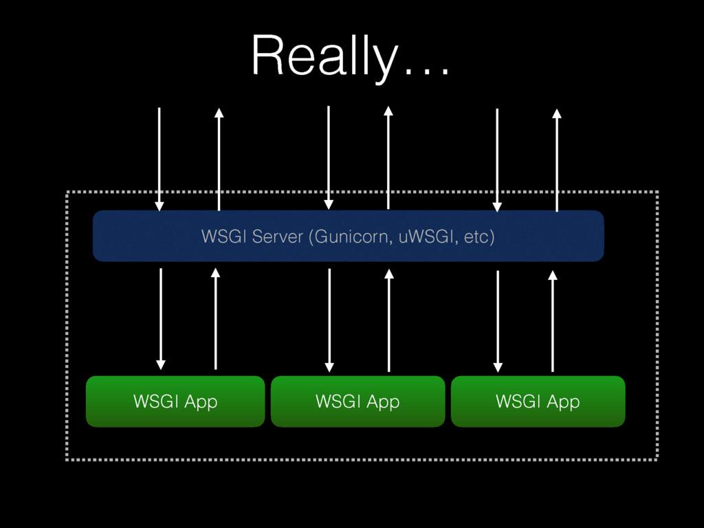 WSGI Server (Gunicorn, uWSGI, etc) WSGI App Rea...