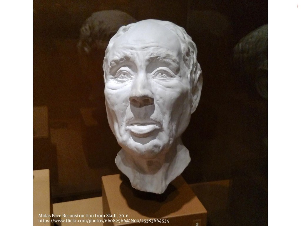 4 Midas Face Reconstruction from Skull, 2016 ht...