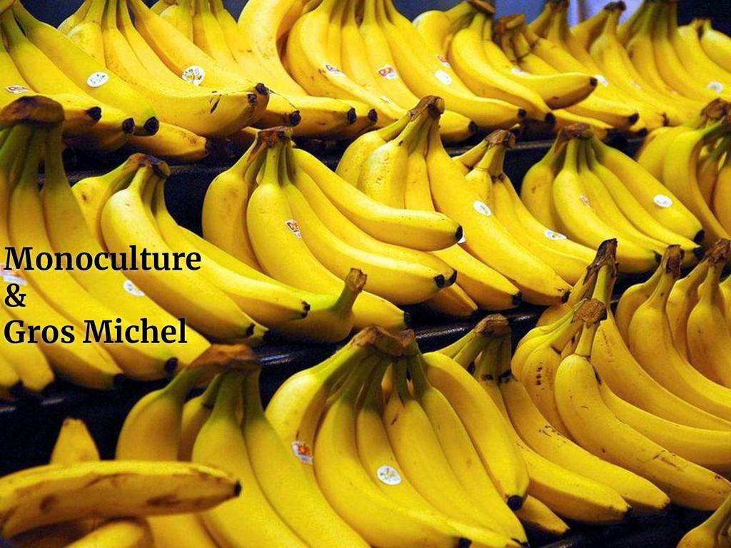 Monoculture & Gros Michel