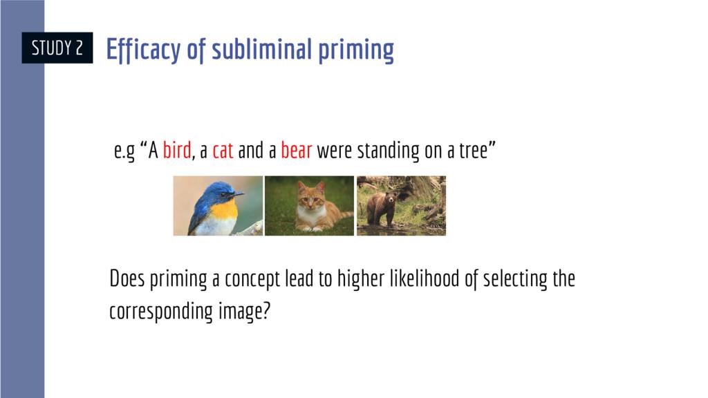 """STUDY 2 e.g """"A bird, a cat and a bear were stan..."""