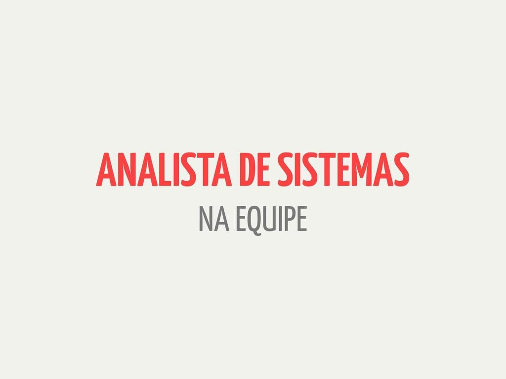 ANALISTA DE SISTEMAS NA EQUIPE