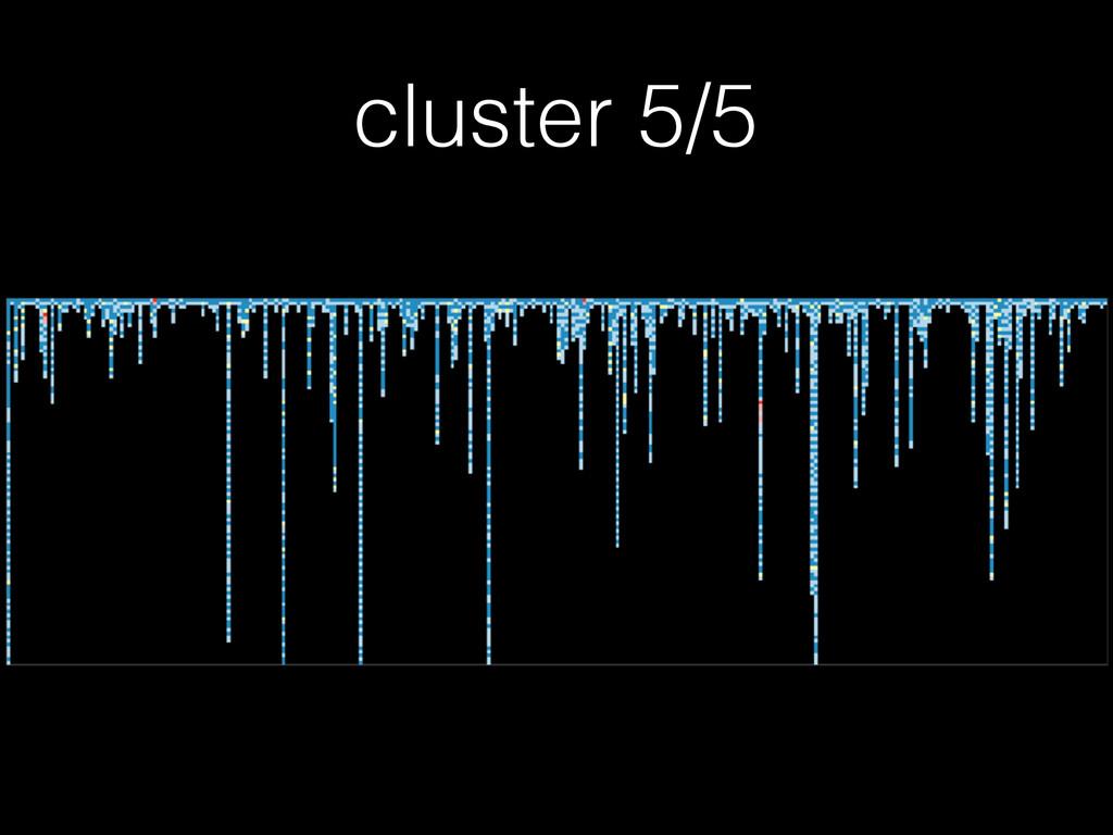 cluster 5/5