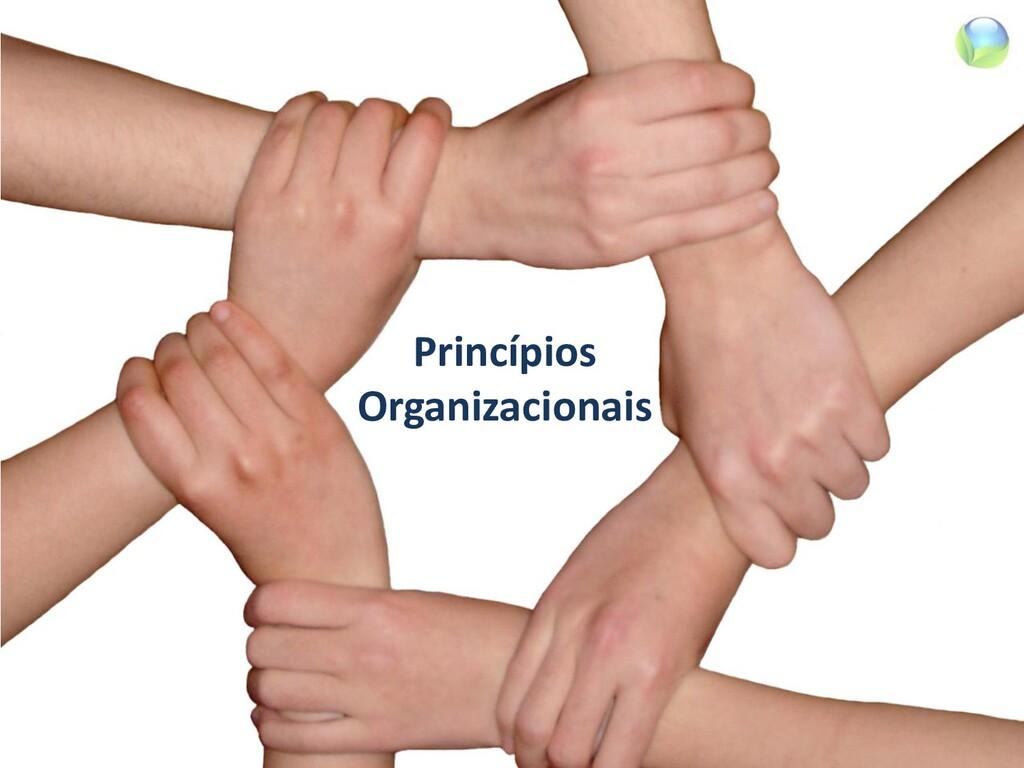 Princípios Organizacionais